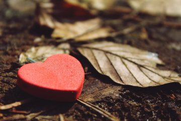 IN THANKSGIVING – 3 FOOL-PROOF PATHS TO LASTING GRATITUDE