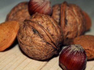walnut-570416_1280-300x225